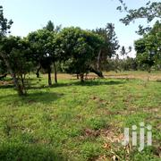 Land for Sale at Chumani | Land & Plots For Sale for sale in Mombasa, Majengo