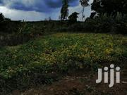 Land And House | Land & Plots For Sale for sale in Nyandarua, Kiriita