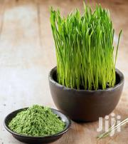 Wheatgrass | Meals & Drinks for sale in Nairobi, Nairobi Central