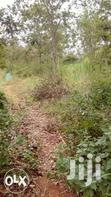 1 Acre Touching A Permanent Dam For Sale In Ngatho,Thika | Land & Plots For Sale for sale in Bunyala West (Budalangi), Busia, Kenya