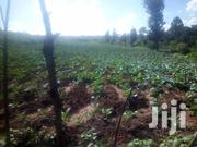 20 Acres For Sale In Nyandarua Machinery Ksh 550k Pa | Land & Plots For Sale for sale in Nyandarua, Kipipiri