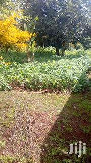 Kerarapon:Land For Sale | Land & Plots For Sale for sale in Kajiado, Ngong