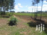 5 And 1/2 Acres For Sale In Naivasha-ihindu,1 Km From Naivasha-nairobi | Land & Plots For Sale for sale in Nakuru, Naivasha East