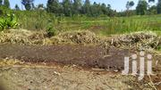One Acre Land For Sale  Runda (Water)Estate Along Runda Groove | Land & Plots For Sale for sale in Kiambu, Kihara
