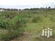 Prime 1 Acre Land for Sale in Thindigua | Land & Plots For Sale for sale in Kiambu, Township E