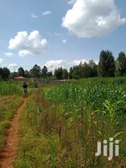 1/8acre Plots on Sale Behind Wambugu Farm | Land & Plots For Sale for sale in Nyeri, Rware