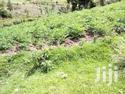 100x100 Plot For Sale | Land & Plots For Sale for sale in Nyandarua, Engineer