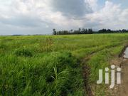 Miwani 170 Acres Land For Sale | Land & Plots For Sale for sale in Kisumu, Miwani