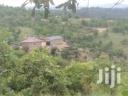 Land for Sale at Nairutia | Land & Plots For Sale for sale in Kiambu, Gatuanyaga
