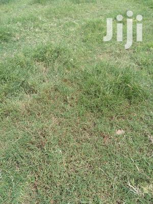A 1/4 Plot For Sale In Ongata Rongai Baclays
