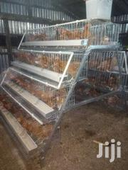 Battery Chicken Cages | Livestock & Poultry for sale in Machakos, Athi River