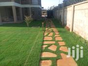 Landscape Services | Landscaping & Gardening Services for sale in Kajiado, Ongata Rongai