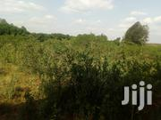 Plots in Kerarapon | Land & Plots For Sale for sale in Kajiado, Ngong