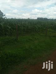 Land 5 Acres In Cheptiret | Land & Plots For Sale for sale in Uasin Gishu, Cheptiret/Kipchamo