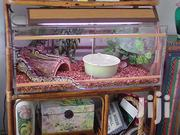 Reptile Cages | Reptiles for sale in Nairobi, Nairobi Central