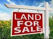 50×100 LAND FOR SALE AT KAGONGO KARURA WITH READY TITLE DEED. | Land & Plots For Sale for sale in Nairobi, Zimmerman
