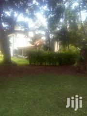 1 Acre In Old Muthaiga For Sale Ksh 260m | Land & Plots For Sale for sale in Nairobi, Karura
