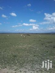 25acers for Sale   Land & Plots For Sale for sale in Kajiado, Kaputiei North