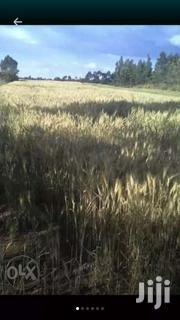 Shamba For Sale | Land & Plots For Sale for sale in Nyandarua, Weru