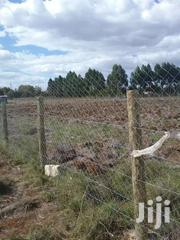 One Acre Plot On Sale At Upper Elgon View In Eldoret | Land & Plots For Sale for sale in Uasin Gishu, Huruma (Turbo)