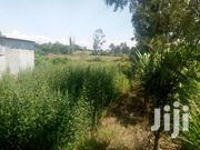 4acres In Nyeri For Sale | Land & Plots For Sale for sale in Nyeri, Karatina Town