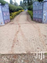 Land And House On Sale | Land & Plots For Sale for sale in Nandi, Kosirai