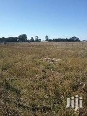 1/4 An Acre Plot On Sale At Kiprombe Estate In Eldoret 50 Metres Road.   Land & Plots For Sale for sale in Uasin Gishu, Kimumu