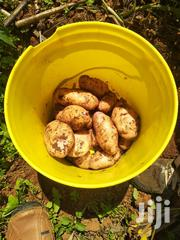 Potatoes ( Shangi) | Meals & Drinks for sale in Nakuru, Molo