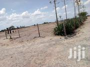 Buy Land 50x100 Piece Of Land For Sale,Good For Farming And Residentia | Land & Plots For Sale for sale in Machakos, Kangundo East