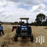 Boma Rhodes Grass Hay | Feeds, Supplements & Seeds for sale in Kajiado, Ngong