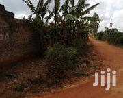 Plot For Sale Sale 50 By 100 In Gachie Kihara | Land & Plots For Sale for sale in Kiambu, Kihara