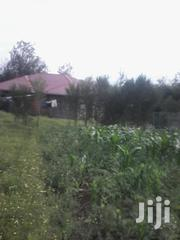 50*100 Plots For Sale In Naivasha Kinamba 100 Mtrs From Tarmac. | Land & Plots For Sale for sale in Nakuru, Biashara (Naivasha)