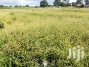 We Have 2 Acres Land in Mapimo Girls- Gongoni Area | Land & Plots For Sale for sale in Kilifi, Gongoni