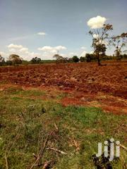 30 Acres Of Land For Sale In Kiambu Along Kenyatta Rd Ksh 15m Pa. | Land & Plots For Sale for sale in Nyeri, Iriaini