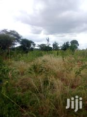 Sale of 3 Acres Near Town.   Land & Plots For Sale for sale in Embu, Mavuria