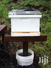 Bee Hive Stand | Pet's Accessories for sale in Nairobi, Kariobangi South