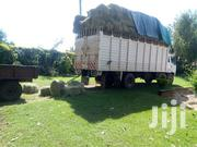 Pure Bomarhodes For Sale   Feeds, Supplements & Seeds for sale in Trans-Nzoia, Cherangany/Suwerwa