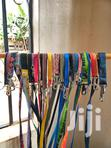 Dog Accesories | Dogs & Puppies for sale in Nairobi Central, Nairobi, Nigeria