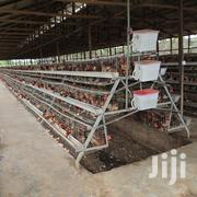 Galvanized Poultry Cages | Farm Machinery & Equipment for sale in Nairobi, Utalii