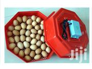 Chicken Incubator | Pet's Accessories for sale in Nairobi, Nairobi Central