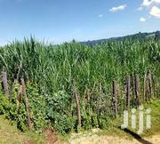 Prime Land for Sale | Land & Plots For Sale for sale in Nyeri, Rware