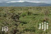 2 Acres for Sale at Nanyuki (Endana) | Land & Plots For Sale for sale in Laikipia, Sosian