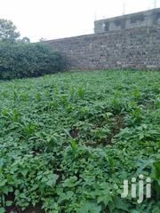 60x60 Plot at Membley Near BTL for Sale | Land & Plots For Sale for sale in Nairobi, Kahawa West