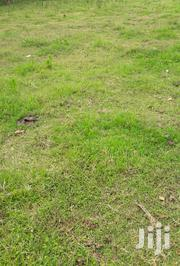 A Quarter of an Acre for Sale in Kericho Town   Land & Plots For Sale for sale in Kericho, Kipchebor