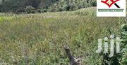 2 Acres for Sale in Chepsir, Kericho | Land & Plots For Sale for sale in Kericho, Chepseon