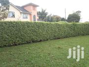 1/4 Acre Plot For Sale In A Gated Community 3 Km Off Kiambu Rd Kist | Land & Plots For Sale for sale in Nairobi, Karura