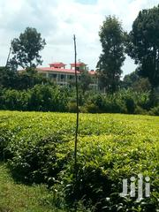 Prime Plots Next To Campus | Land & Plots For Sale for sale in Nyeri, Magutu