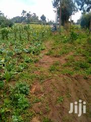 1/4,Of An Acre On Sale At Kwaharaka Kinangop | Land & Plots For Sale for sale in Nyandarua, Nyakio