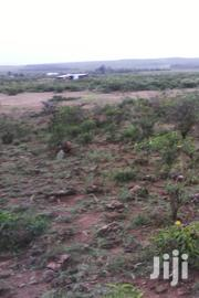 Land Plot At Gilgil 50*100.8km From Gilgil Town With Ready Title Deed | Land & Plots For Sale for sale in Nakuru, Gilgil