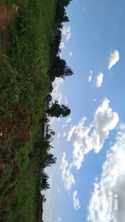 An Acre of Land at Siling on Sale | Land & Plots For Sale for sale in Migori, Suna Central